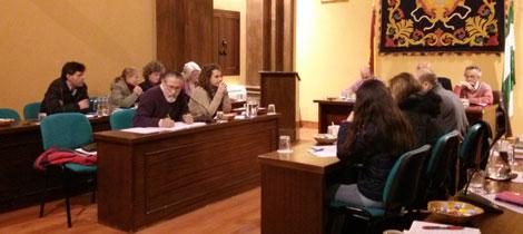 Pleno Municipal de Febrero de 2015